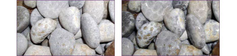 Dry stones on the left, wet stones on the right